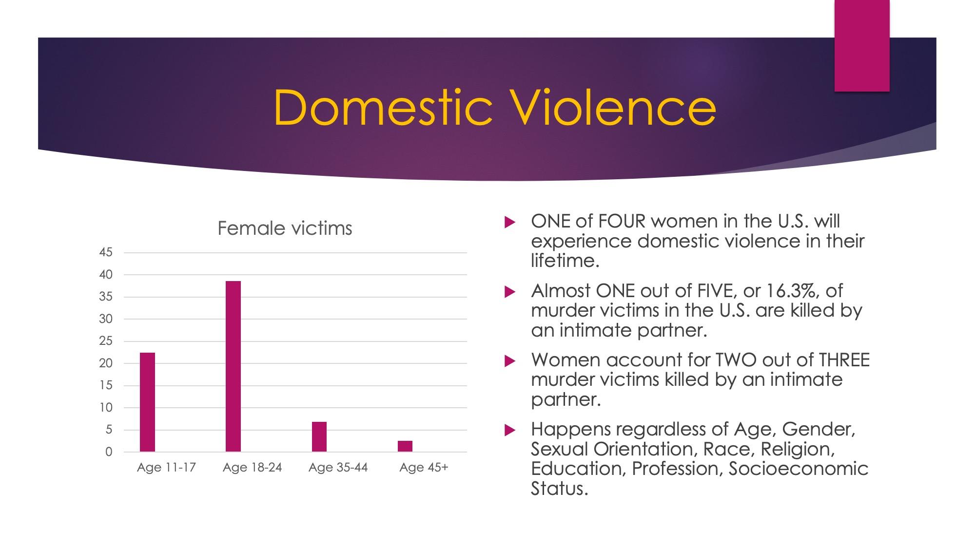 Domestic Violence Presentation Slide